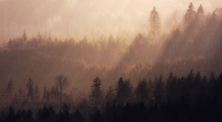 Aamun kajoa. Kuva: Marko Pikkarainen