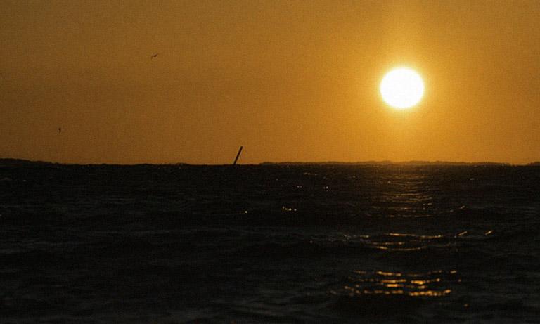Merellistä tuulahdusta. Kuva: Marko Pikkarainen
